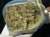 marihuana-kanabis-droga.jpg